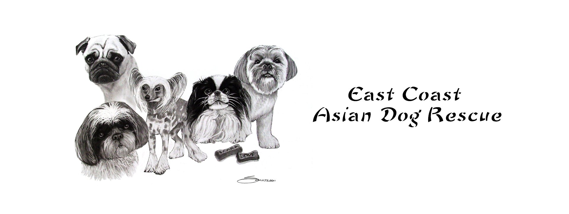 Rescuing Asian Breed Dogs